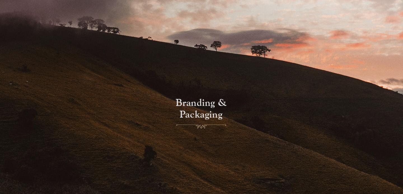 Branding & Packaginglaticinios gourmet Araxa