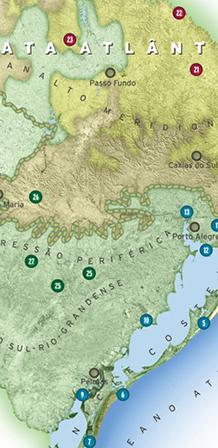 Ilustração mapa RIO GRANDE DO SUL