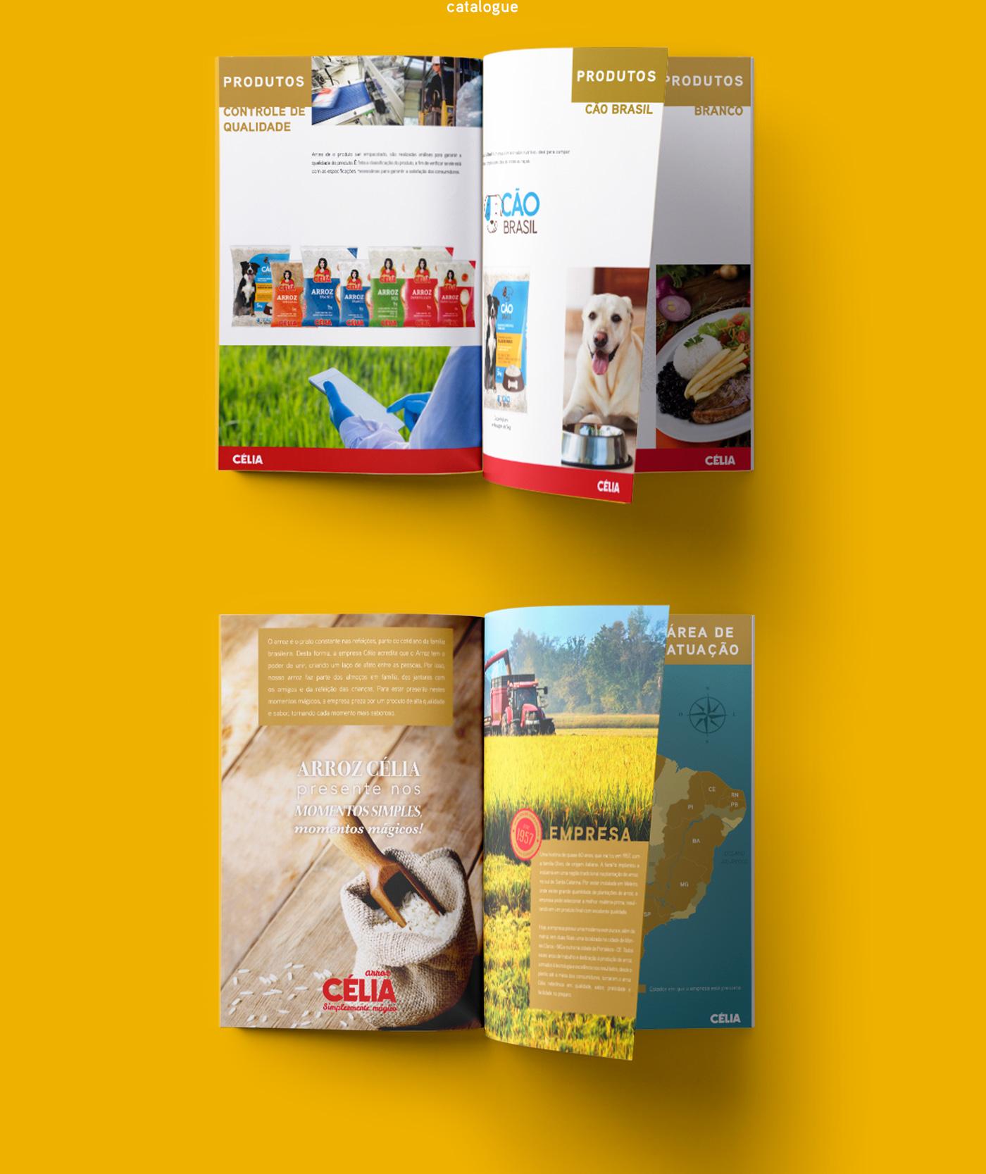 design de Catálogo de produtos e materiais de campanha