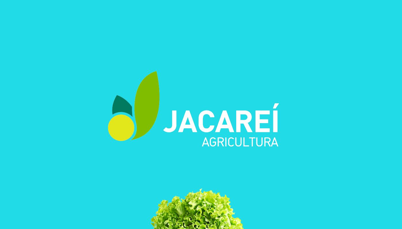criação de marca para agribusiness