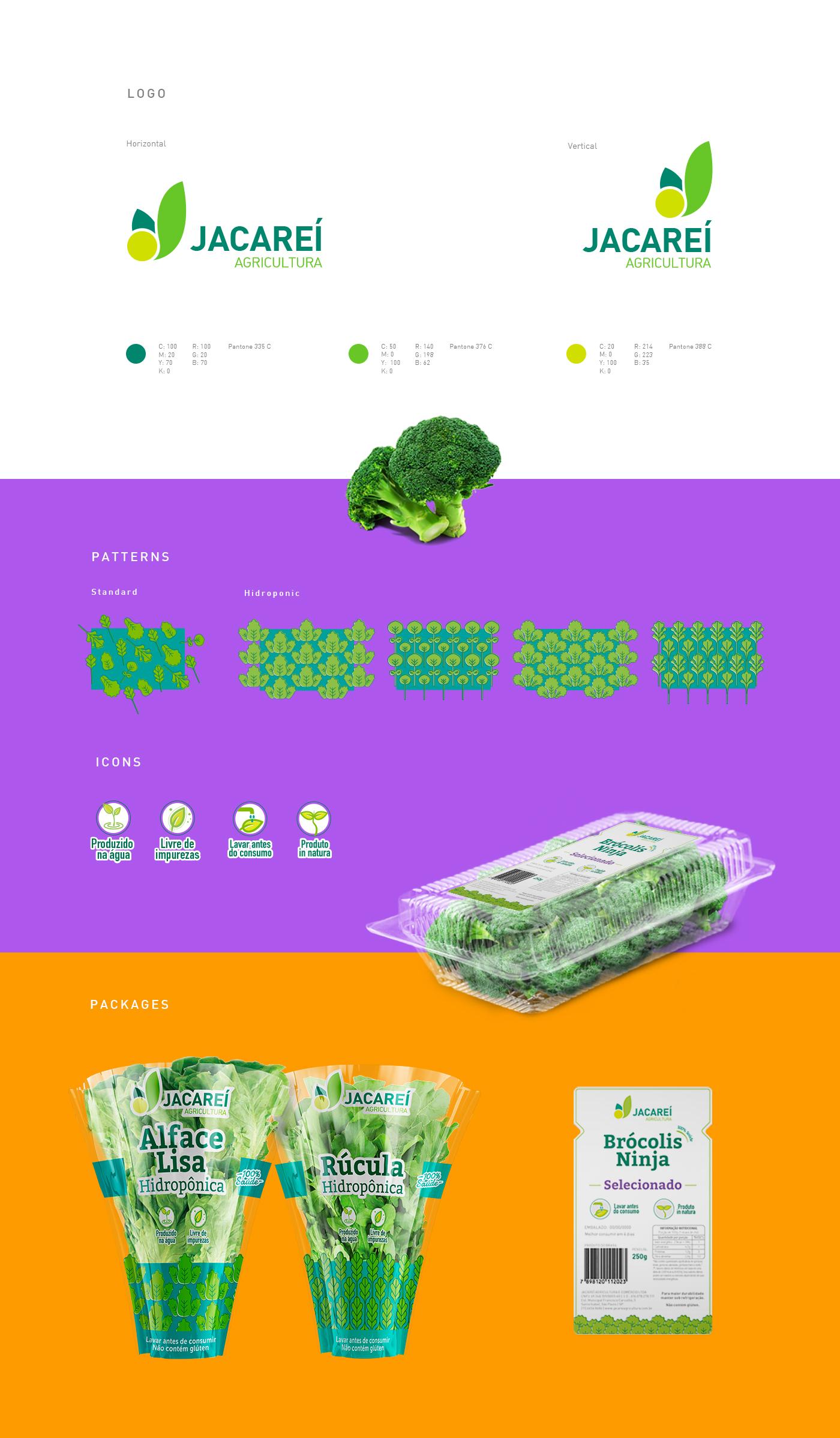 criação de embalagens para verduras