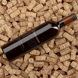 Design de rótulos de vinho chileno Esperanto