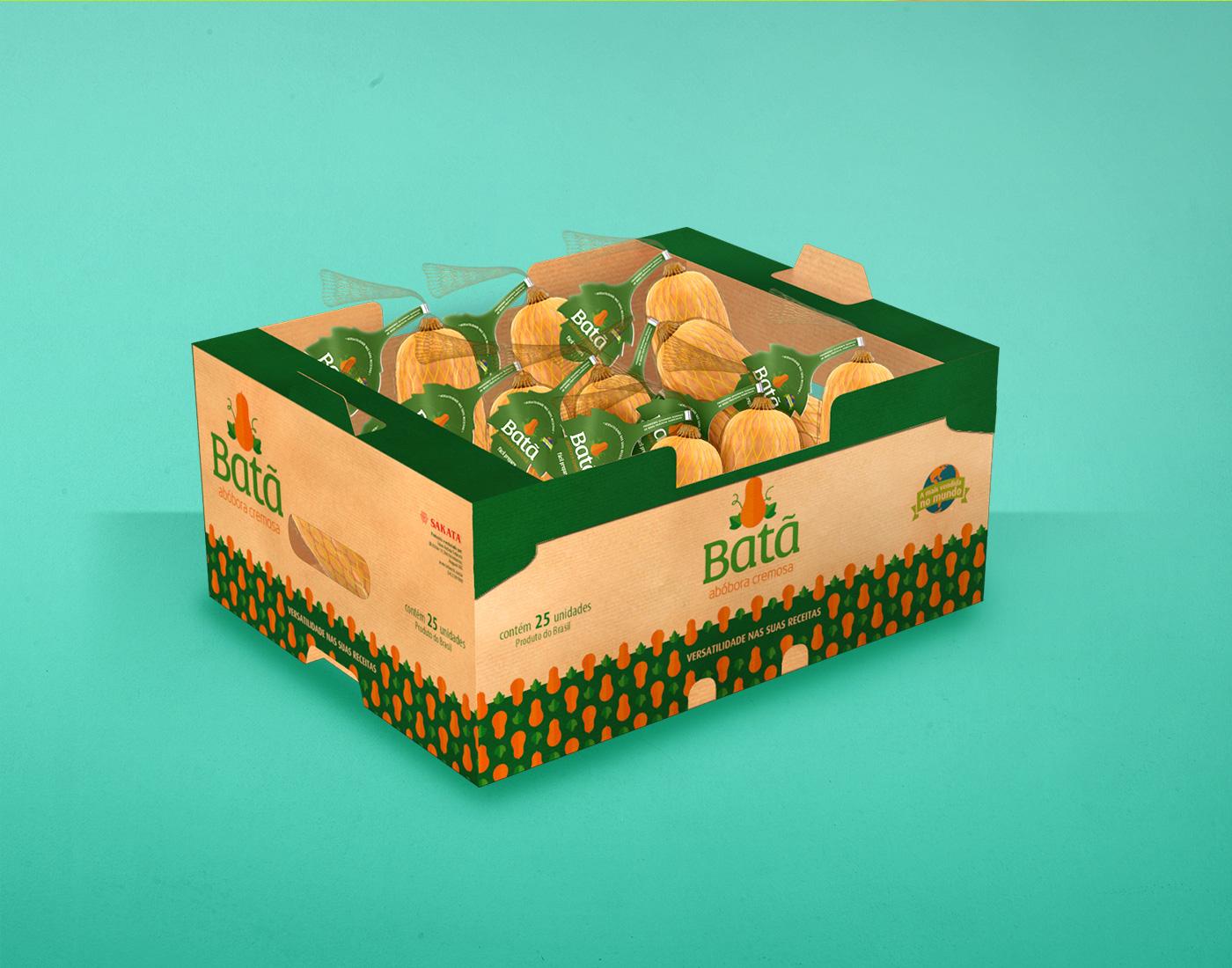 Design de embalagem de frutas e abóbora
