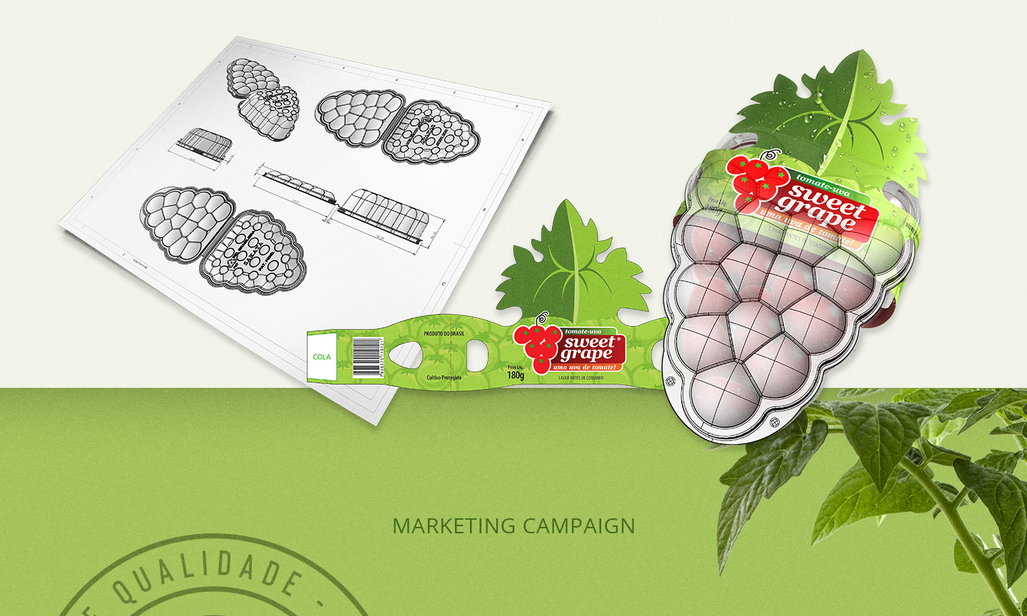 Packaging design for tomatoes