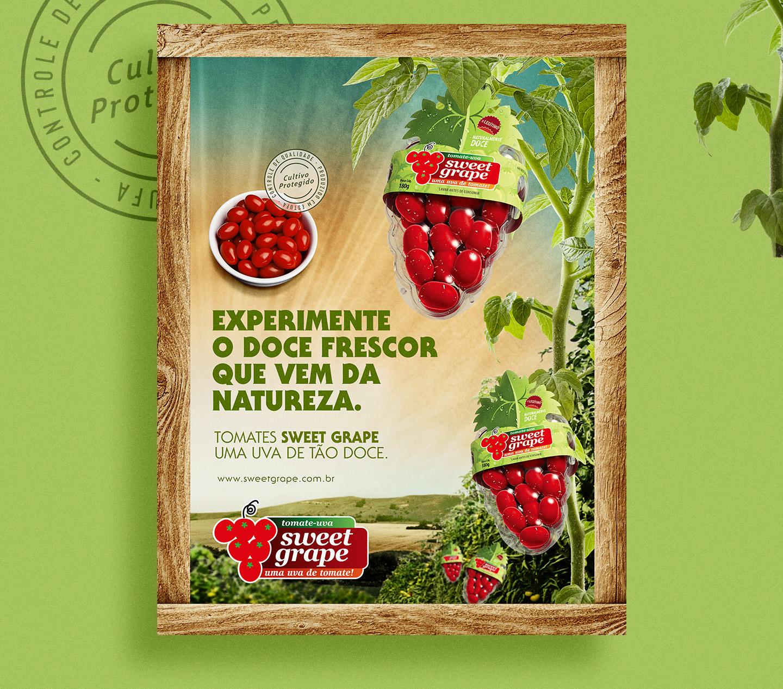 Campanha para ponto de venda para tomates Sweet Grape